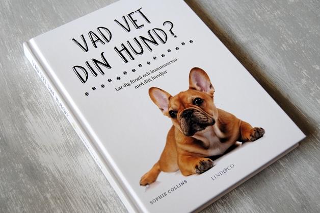 Omslagsbild Vad vet din hund?