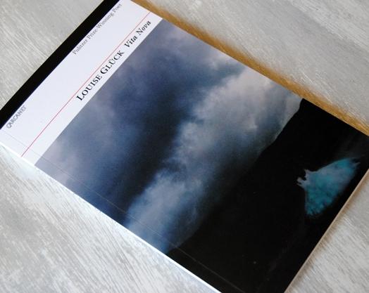 Omslagsbild Vita Nova av Louise Glück