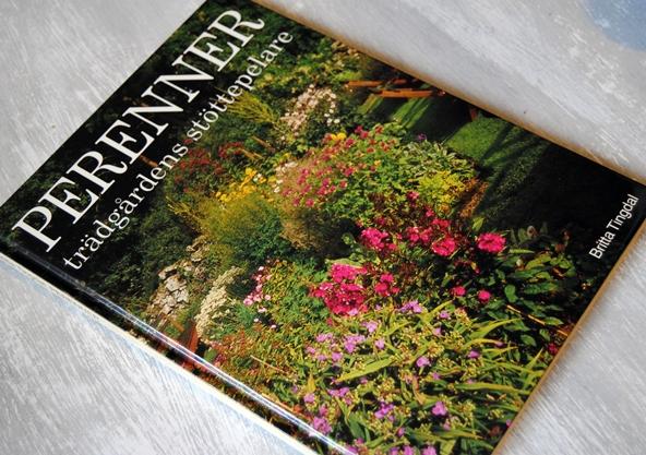 Omslagsbild Perenner: Trädgårdens stöttepelare av Britta Tingdal