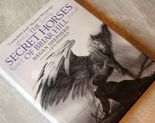 Omslagsbild The Secret Horses of Briar Hill av Megan Shepherd